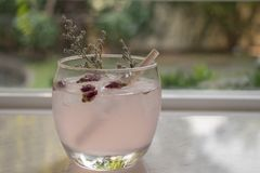 Tea with rose flower petals. Dried flower tea with ice royalty free stock image