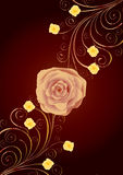 Tea-rose and gold curls Royalty Free Stock Photos