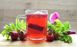 Tea of rose hip Stock Images