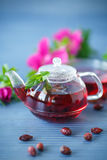 Tea with rose hips Stock Image