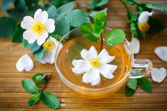 Tea of rose petals Stock Photo