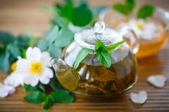 Tea of rose petals Stock Image