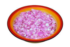 Tea rose petals Royalty Free Stock Images