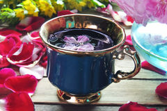 Tea with rose petals Royalty Free Stock Image