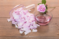 Tea rose and rose water Stock Image