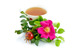 Tea rosehip Royalty Free Stock Images
