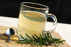 Tea with rosemary. Herbal tea with fresh rosemary close up Royalty Free Stock Photography