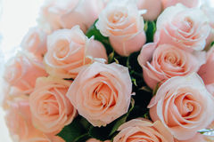 Tea roses bouquet. Closeup beautiful tea roses wedding bouquet background Stock Images