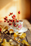 Tea in the rustic Chic style.  Tea Party.  Green tea in a cup an Stock Images