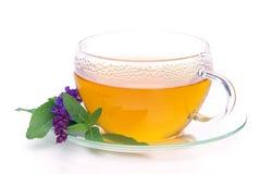 Tea sage Royalty Free Stock Photo