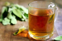 Tea with sage in a glass. Royalty Free Stock Photography