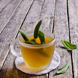 Tea with sage leaves Stock Photography