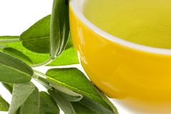 Tea of Sage Plant Royalty Free Stock Image
