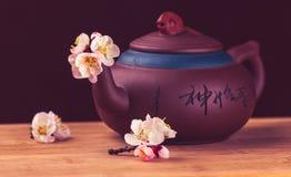 Tea & sakura_13 Stock Photography