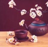 Tea & sakura_12 Stock Images