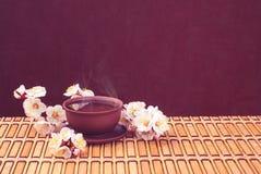 Tea & sakura Stock Photos