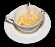 Tea saucer with splashes on a black background Stock Images