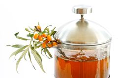 Tea and sea buckthorn Royalty Free Stock Photo