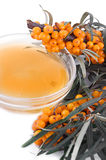 Tea of sea-buckthorn Stock Photos