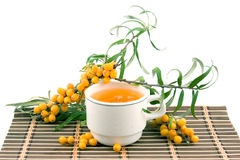 Tea with sea-buckthorn Stock Photo