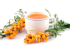 Tea with sea-buckthorn Royalty Free Stock Photography