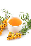 Tea with sea-buckthorn Stock Image