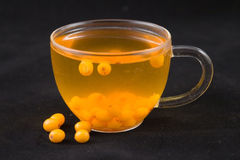 Tea with sea-buckthorn Stock Image