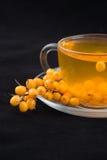 Tea with sea-buckthorn Royalty Free Stock Photo