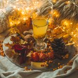 Tea with sea-buckthorn berries and ginger on old books, honey, candle and autumn leaves. The atmosphere of comfort at home. Cozy stock photo