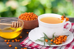Tea of sea-buckthorn berries with honey on wooden table blurred garden background Royalty Free Stock Photography
