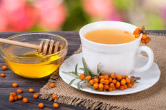 Tea of sea-buckthorn berries with honey on wooden table blurred garden background Royalty Free Stock Photo