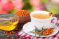 Tea of sea-buckthorn berries with honey on wooden table blurred garden background Royalty Free Stock Image