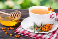 Tea of sea-buckthorn berries with honey on wooden table blurred garden background Stock Images