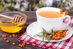 Tea of sea-buckthorn berries with honey on wooden table blurred garden background. Tea of sea-buckthorn berries with honey on wooden table with blurred garden royalty free stock photo