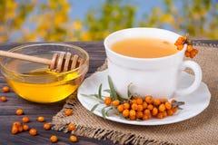 Tea of sea-buckthorn berries with honey on wooden table blurred garden background Stock Photos