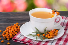 Tea of sea-buckthorn berries on wooden table with blurred garden background.  Stock Photos