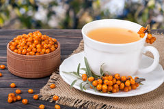 Tea of sea-buckthorn berries on wooden table with blurred garden background.  royalty free stock image