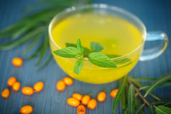 Tea with sea buckthorn Royalty Free Stock Photos