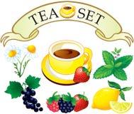 Tea set aromatic plants. Daisy, lemon, berries, mint royalty free illustration