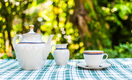 Tea set in the garden Royalty Free Stock Images