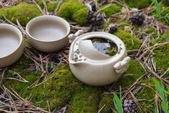 Tea set on the ground Royalty Free Stock Images