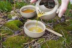 Tea set on the ground Stock Image