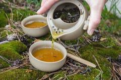 Tea set on the ground Royalty Free Stock Photo