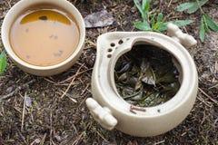 Tea set on the ground Royalty Free Stock Photos