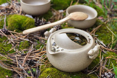 Tea set on the ground Stock Photography