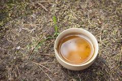 Tea set on the ground Stock Photos