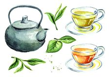 Tea set with pot, cups and green tea leaves. Watercolor hand drawn illustration, isolated on white background. Tea set with pot, cups and green tea leaves Royalty Free Stock Photos