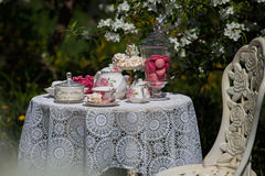 A tea set royalty free stock photography