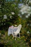 A tea set Royalty Free Stock Photo