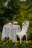 A tea set Royalty Free Stock Photos
